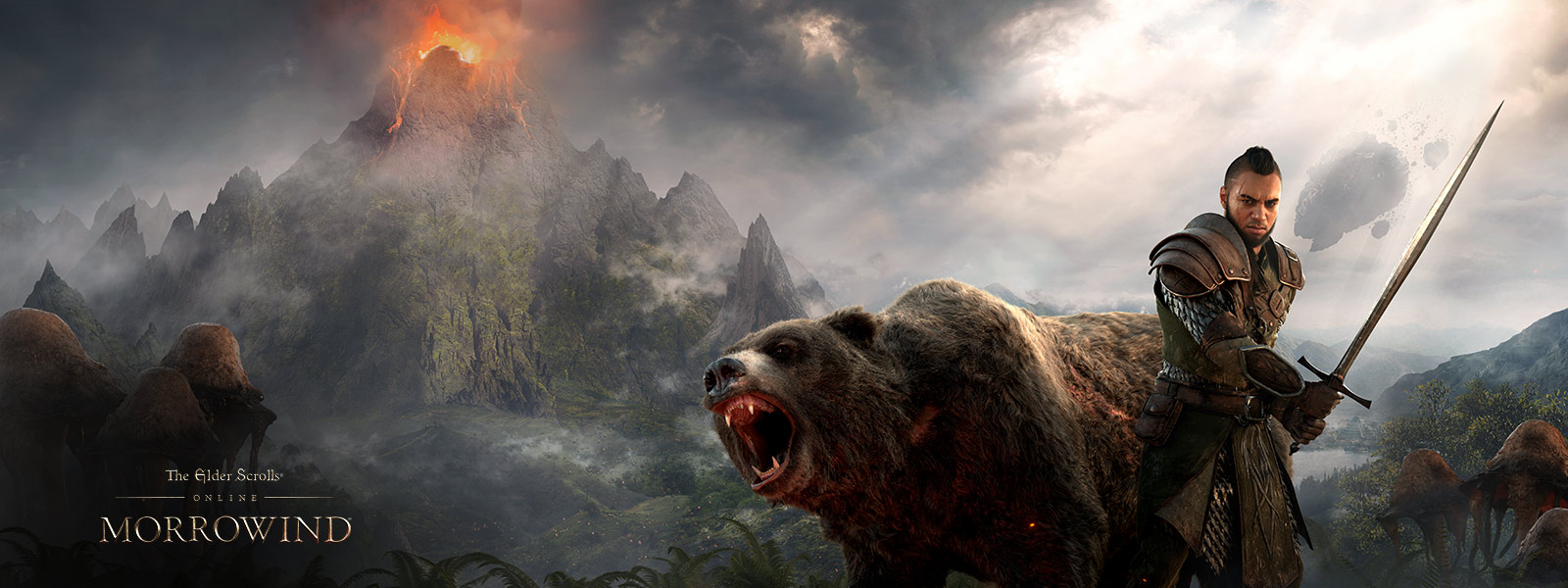 Playable character holding a sword while standing next to a bear with a volcano in the background