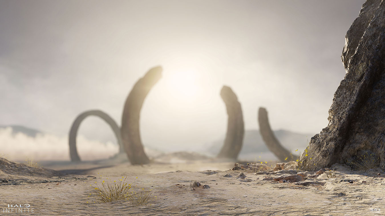 Ancient rings in the desert