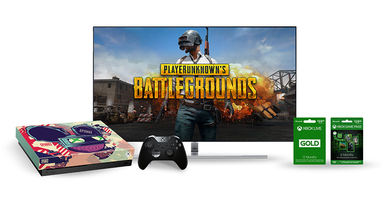 TV screen with game cards and custom PlayerUnknowns Battlkegrounds console