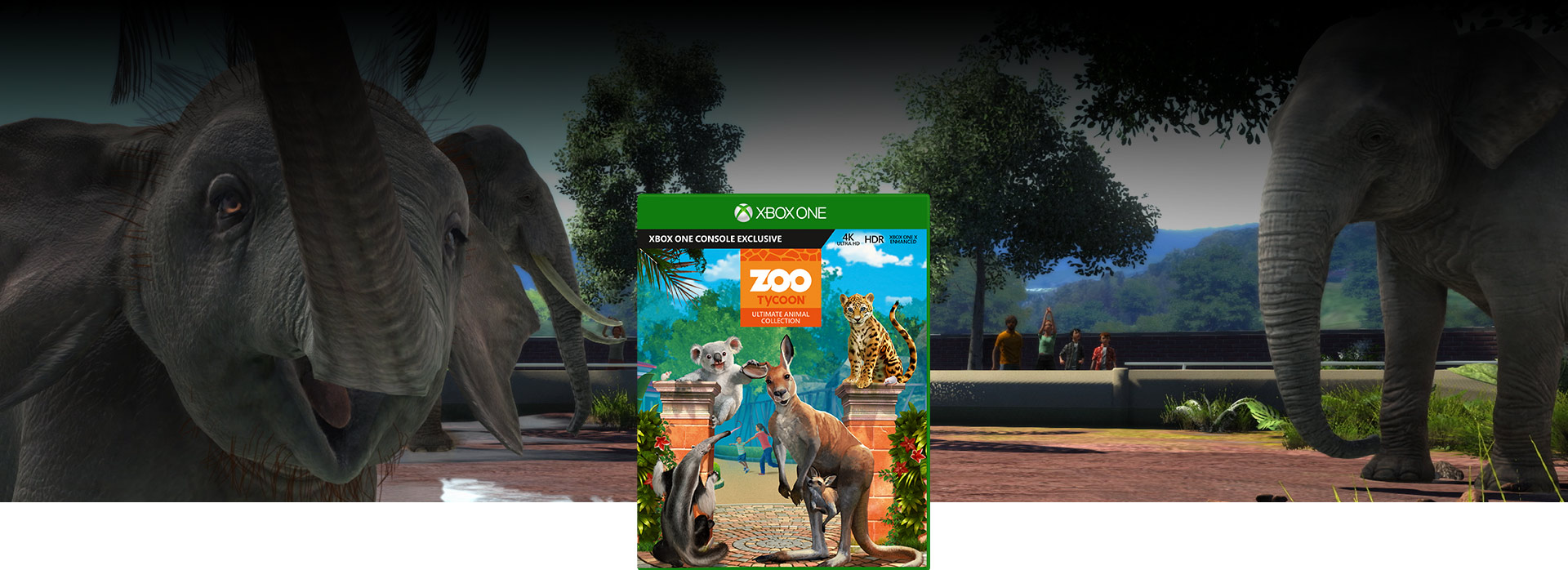 Zoo Tycoon-coverbillede