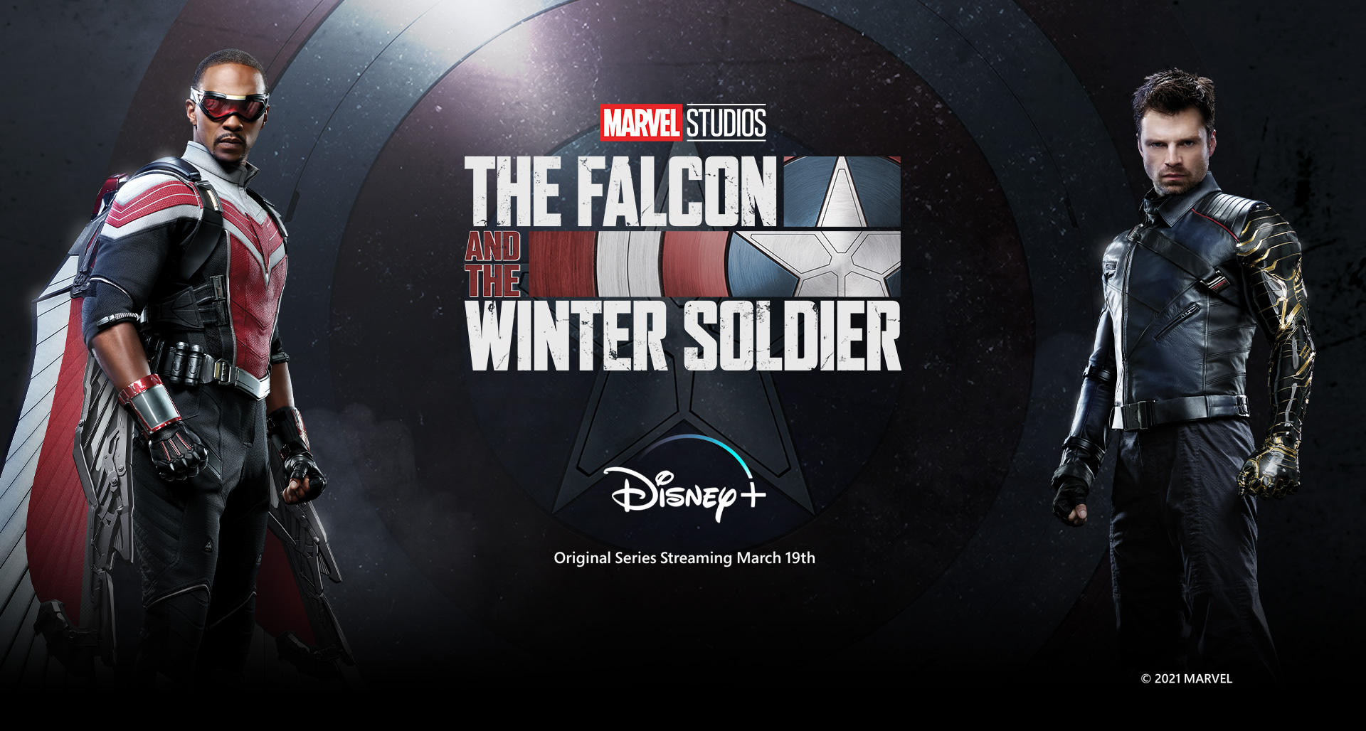 Marvel Studios' The Falcon and the Winter Soldier logo, flanked by the title heroes, with Disney+ logo
