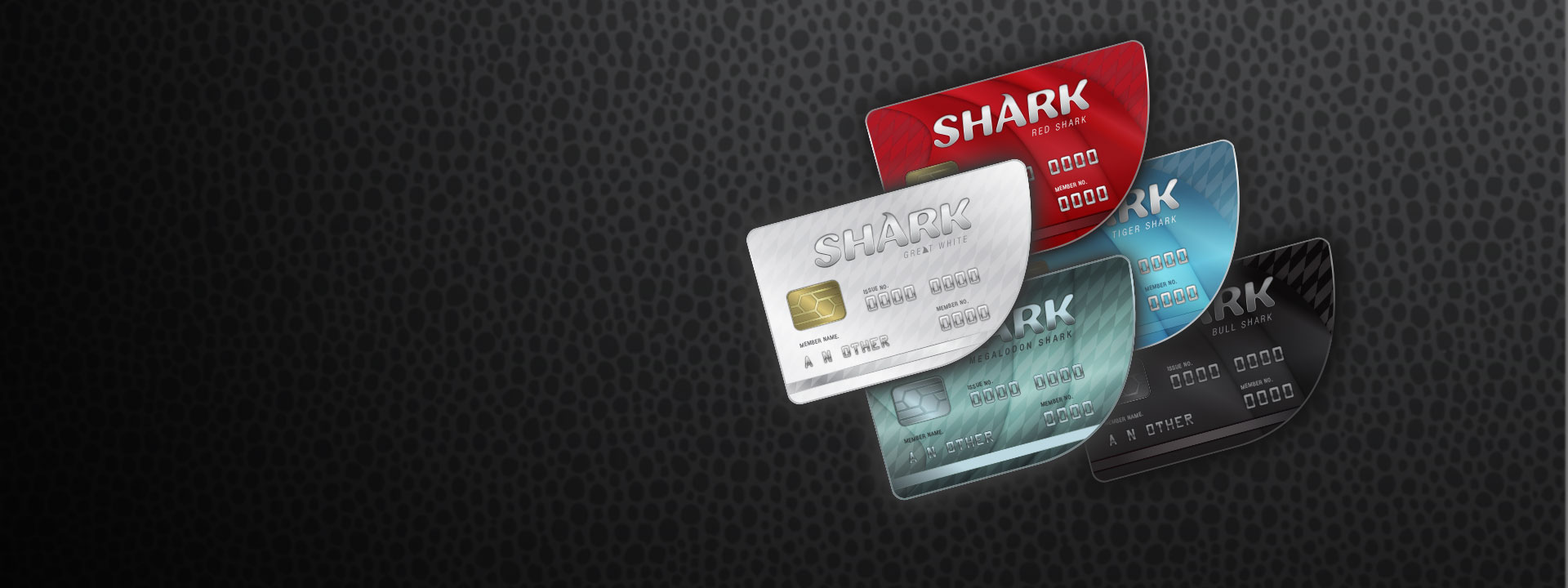 Five different coloured Shark credit cards lined up.