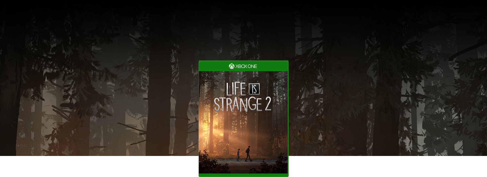 Life is Strange 2 boxshot, background of trees in a Seattle forest