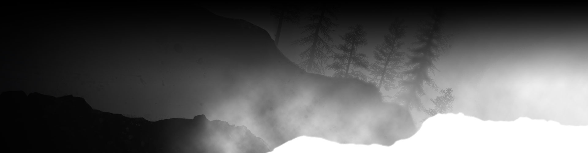 Silhouette of trees and rocks covered in fog