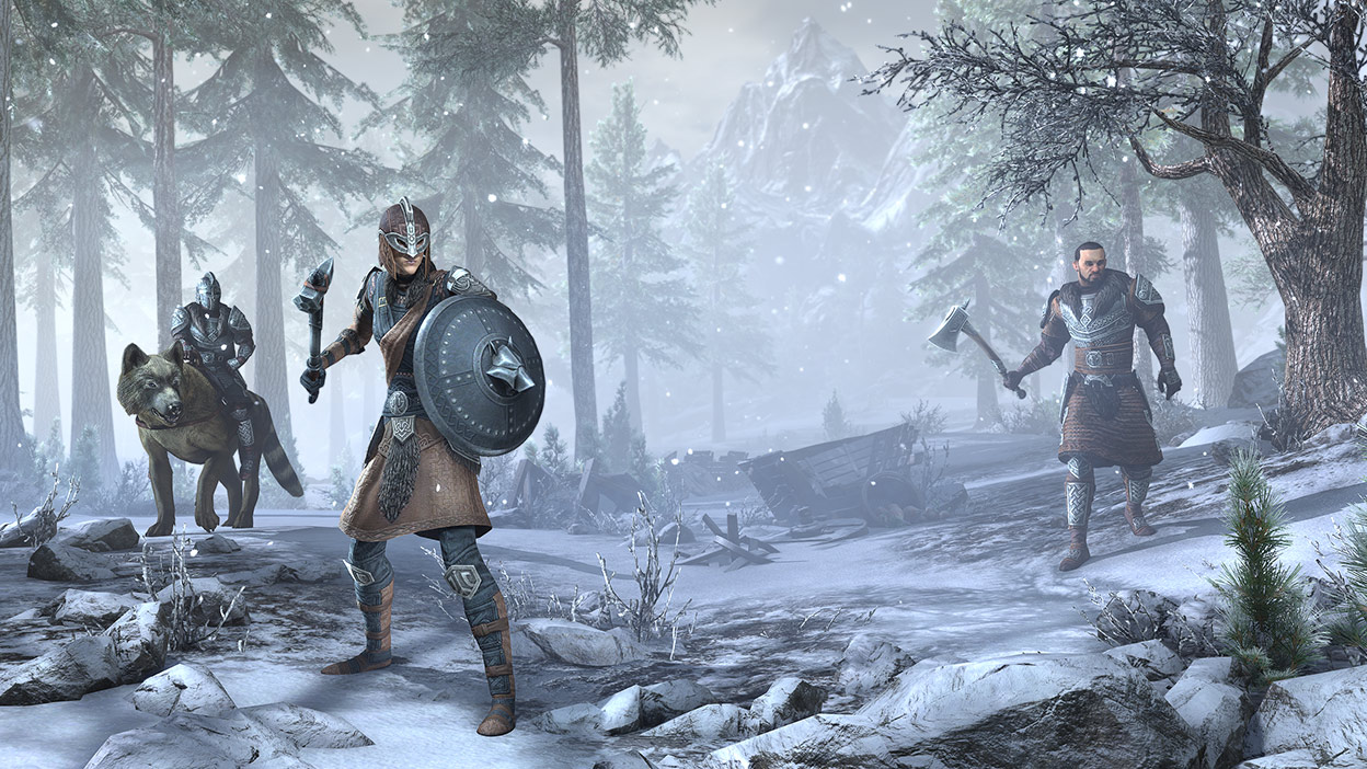 Three characters with weapons and armour about to fight in snowy forest