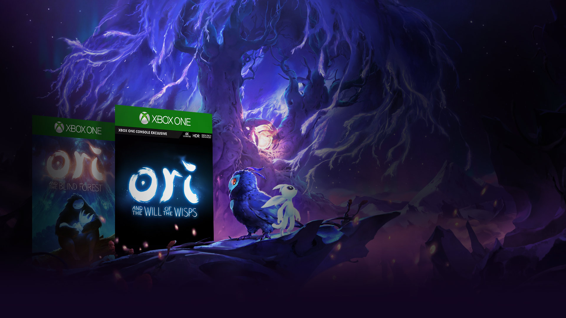 View of Ori and the Will of the Wisps characters standing on the edge of a snowy ledge